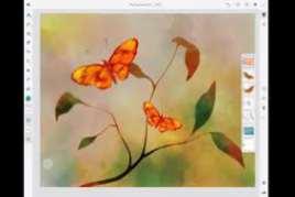 Adobe Fresco 1